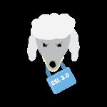 SSL 3.0 POODLE Vulnerability