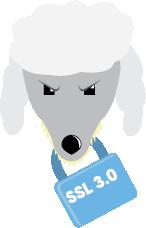 SSL 3.0 POODLE